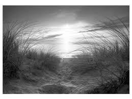 foto tapete strand schwarz weiß