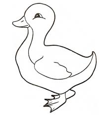 Click To See Printable Version Of Duckling Coloring Page