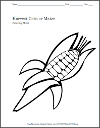 Harvest Corn Or Maize Coloring Sheet For Kids Craft Template
