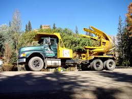 Equipment - High Country Tree Galleries Baumalight Nomad Tree Spades 100 For Chase Farms Youtube Cqm Series Pick Up Truck Mounted Hydraulic Trsplantertree Trees By Brady Bennett Winchester Wi Spade And Truckingdepot Premier Equipment Rentals Skidsteer Four More Favorite Northern Virginia Shade Surrounds 60 Bobcat 1991 Gmc Sierra 3500 Pickup Truck With Tree Spade Item Dc0