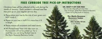 Bethlehem Lights Christmas Tree Instructions by Christmas Tree Pickup Christmas Ideas