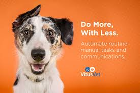 VitusVet - Complete Veterinary App & Reminder Solution For Vets 58 Off Valley Vet Coupon Promo Codes Retailmenotcom Oukasinfo Pet Supply Store Sckton Manteca Ca Carters Mart Welcome To Benjipet Sugar House Veterinary Hospital Vetenarian In Salt Lake City Ut Animal Medical Center Of Corona Your Friendly Vet For Your Coupon September 2018 Deals Northstar Vets Home 40 Military Discounts 2019 On Retail Food Travel More Promo Code Free Shipping Edreams Multi City Memorial Day Where Vets And Military Eat Get Discounts Flea Tick Coupons Offers Bayer Petbasics