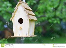 Backyard Birdhouse Royalty Free Stock Photo - Image: 25452055 Backyard Birdhouse Youtube Free Images Insect Backyard Garden Inverbrate Woodland Amazoncom Boys Woodworking Bbw81 Cardinal Nest Box Bird House Decorative Little Wren Haing Yard Envy Table Lawn Home Green Lighting Wooden Modern Take On A Stuff We Love Pinterest Shop Glory 8125in W X 85in H 8in D White Discovery Channel Birdhouse Wooden Nesting Baby Birds In My Bird House How To Make Spring Diy Craft For Kids Couponscom