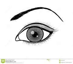 Monochrome Black And White Outline A Female Eye Stock Vector