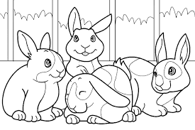 Rabbit Cuties Colouring Pages