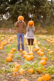 Tims Pumpkin Patch by 8 Best Fall Wedding Ideas Images On Pinterest Fall Wedding