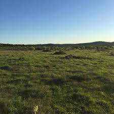 Barnes Keith Ranch - Home | Facebook Hunting Land For Lease In Texas Barnes Keith Ranch Way To Show Horserider Western Traing Howto Advice Petersens Devoted The Sport Of Recreational 2017 Camp Meeting Daily Schedules District United Kings Head Coach Smart Discusses Struggles Against Houston Exotics Gallery Whitetail Deer Turkeys Goats And Wild Pigs Index Names From 1968 Bridgeport Newspaper Ultimate Predatorbarneskeith Ranch Boss Hog Contest Youtube Ultimate Predator