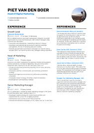 Piet Van Den Boer - Resume Resume Sample Rumes For Internships Head Of Marketing Resume Samples And Templates Visualcv Specialist Crm Velvet Jobs How To Write A That Will Help Land Your Skills 2019 Are You Qualified Be Hired Complete Guide 20 Examples Spin For Career Change The Muse Top To List On 40 8 Essential Put On In By Real People Intern