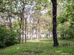 Lampe Mo Zip Code by Table Rock Lake Front Lot Lampe Real Estate Lampe Mo Homes For