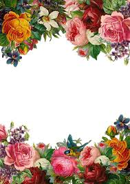 Flower Rose Frame Collection Vintage Composition