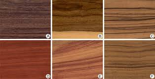 Different Types Of Wood Joints And Their Uses by Wood Plant Tissue Britannica Com