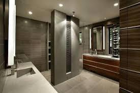 light grey bathroom vanity by contemporary buildmuscle