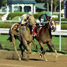 Halloween 6 Online Castellano by Spinaway Produces Dead Heat At Saratoga Race Course Times Union