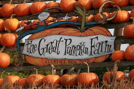 Pumpkin Farm Clarence Ny by Splendid Fall Weather Brings Big Crowds To Pumpkin Farm U2013 Discover