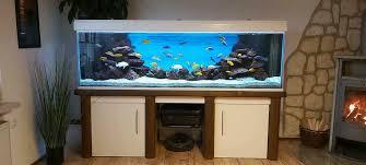 aquarium komplett set 200x60x60 weißglas incl malawi besatz
