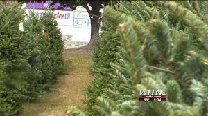 Rite Aid Pre Lit Christmas Trees by Jacksonville Fire Ems Talks Christmas Tree Safety