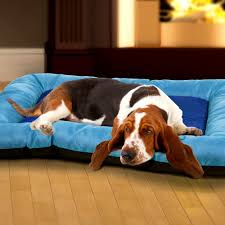 Chewproof Dog Bed by Bedroom Sweet Chew Proof Dog Beds Indestructible Bed Reviews Paw