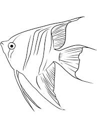 Angelfish Coloring Pages 10