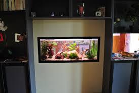 aquarium dans le mur le bac de pilou
