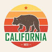 Vector Sketch California T Shirt With Grizzly Bear Graphics Design