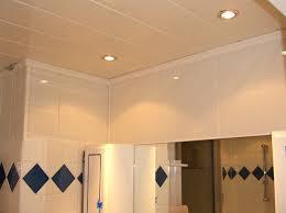 faux plafond pvc salle de bain leroy merlin chaios