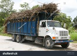 Truckers Belize Transport Truck Loads Sugarcane Stock Photo ... Classroom Valentines Truck Loads Wild Ink Press Oversize Load Strikes Damages Bridge Overpass Full Taa Logistics Welcome To Freight Innovations Domestic Holiday Savings At Junkman Vegasjunkman The Top 4 Mistakes In Transporting Oversized Truck Loads Forrest Serious Modern Logo Design For Local Produce Australia By Jems Petsmart Announces The First Of Nearly 90 Semitruck Deliveries Driving Jobs Search Or Trucks North Shore And Transportation Driver On Lift Products Plant Longford Precast Removal Guy Fniture Removalshousehold Removssmall Office