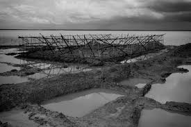 Sinking Islands In The South Pacific by The Hungry Tide Bay Of Bengal U0027s Sinking Islands Al Jazeera