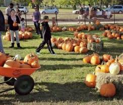 Pumpkin Farm Ct by New England Fall Events Pumpkins On The Pier Puts A New Spin On