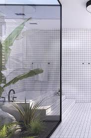 badezimmer trends wintergarten chic mit palmen und kakteen