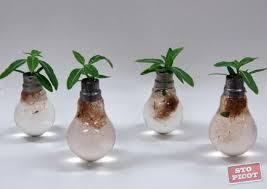 light bulb recycle incandescent light bulbs best design creative
