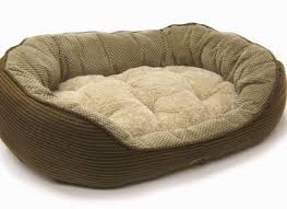 Mammoth Dog Beds by Large Dog Beds For Large Dogs By Mammoth Beds Dog Beds And Costumes