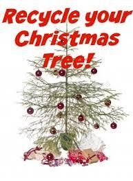 Christmas Tree Permits Colorado Buffalo Creek by Recycle Your Christmas Tree Bonus Free Mulch