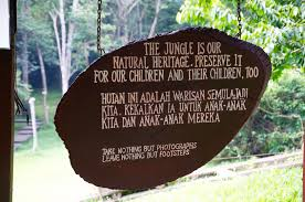 jungle time in taman negara out of office 2015