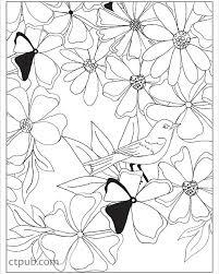 Boho Designs Coloring Book Zoom