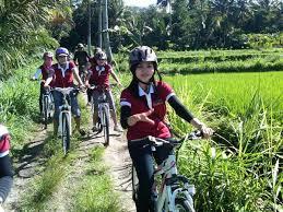Wisata Sepeda Di Bumi Merapi Agrowisata