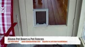 Doggie Door Insert For Patio Door by Hale Pet Door In Glass Installation Youtube