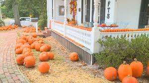 Pumpkin Patch Louisiana by Ruston Pumpkin Patch Making A Difference For Domestic Abuse Victims