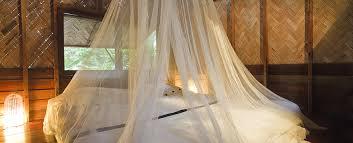 was hilft gegen mücken im schlafzimmer zuhause bei sam