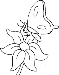 A Small Butterfly Perching On Flowers Coloring Pictures