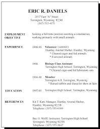 Sample Resume First Job Amere