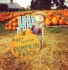 Pumpkin Patch College Station 2017 by Pumpkin Patch Aggie Habitat For Humanity
