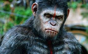 Monkey Business: Dawn Of The Planet Of The Apes Is Smart ... Closer Look Dawn Of The Planet Apes Series 1 Action 2014 Dawn Of The Planet Apes Behindthescenes Video Collider 104 Best Images On Pinterest The One Last Chance For Peace A Review Concept Art 3d Bluray Review High Def Digest Trailer 2 Tims Film Amazoncom Gary Oldman
