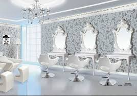 All Purpose Salon Chair Canada by The 25 Best Salon Equipment Ideas On Pinterest Salon Ideas