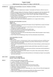 100 Agile Resume Business Analyst Samples Velvet Jobs