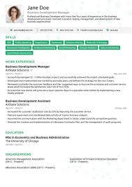 100 Free Professional Resume Templates Layout Html Template Elemis