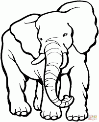 Coloring Download Elephant Head Page Face Best Of