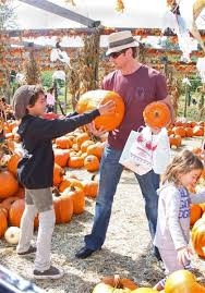 Pumpkin Picking In Ct by 42 Best Visit Connecticut Farms Images On Pinterest Blueberry