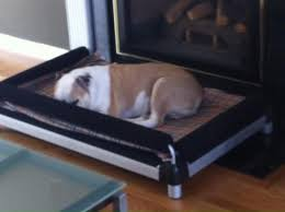 Chew Resistant Dog Bed by Doggysnooze Elevated Chew Resistant Dog Beds On Justluxe Com