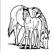 Horse Eating With Baby In Horses Coloring Page