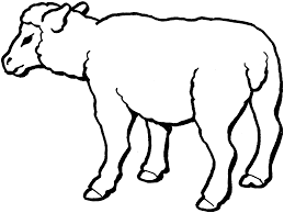 Lamb Coloring Page Free Printable Sheep Pages For Kids Inspirational